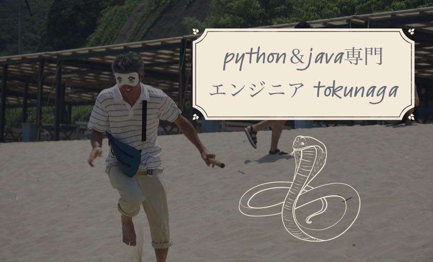 python開発エンジニア